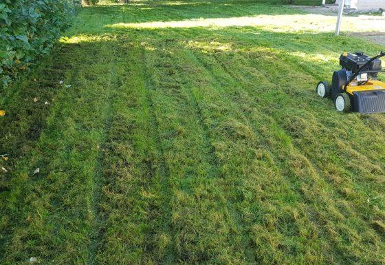 Syksy saapuu ja nurmikko ilmattava